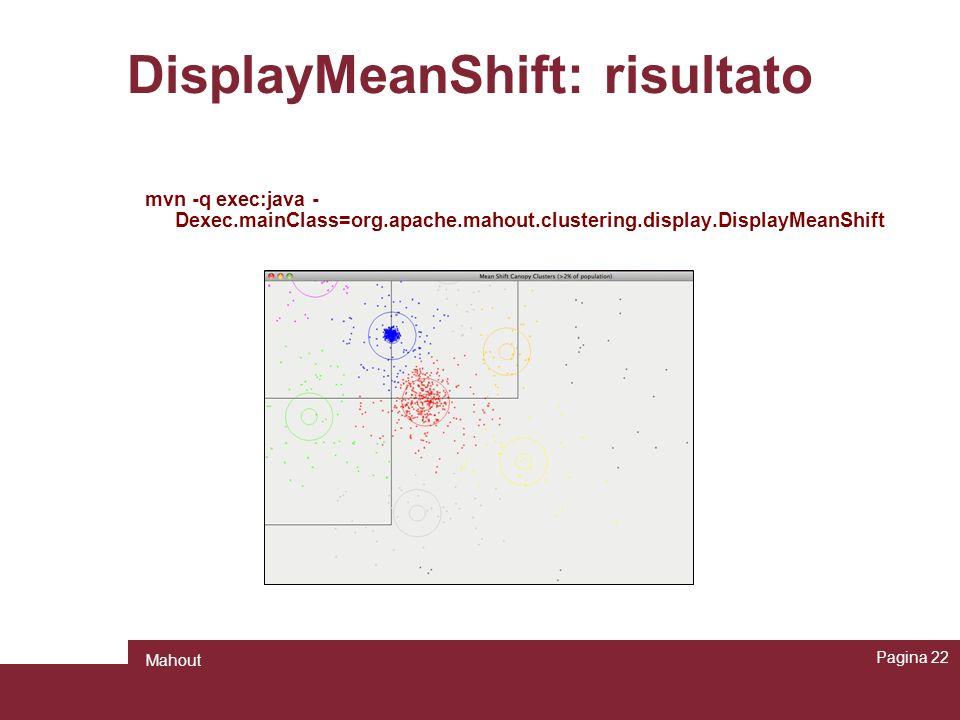 DisplayMeanShift: risultato
