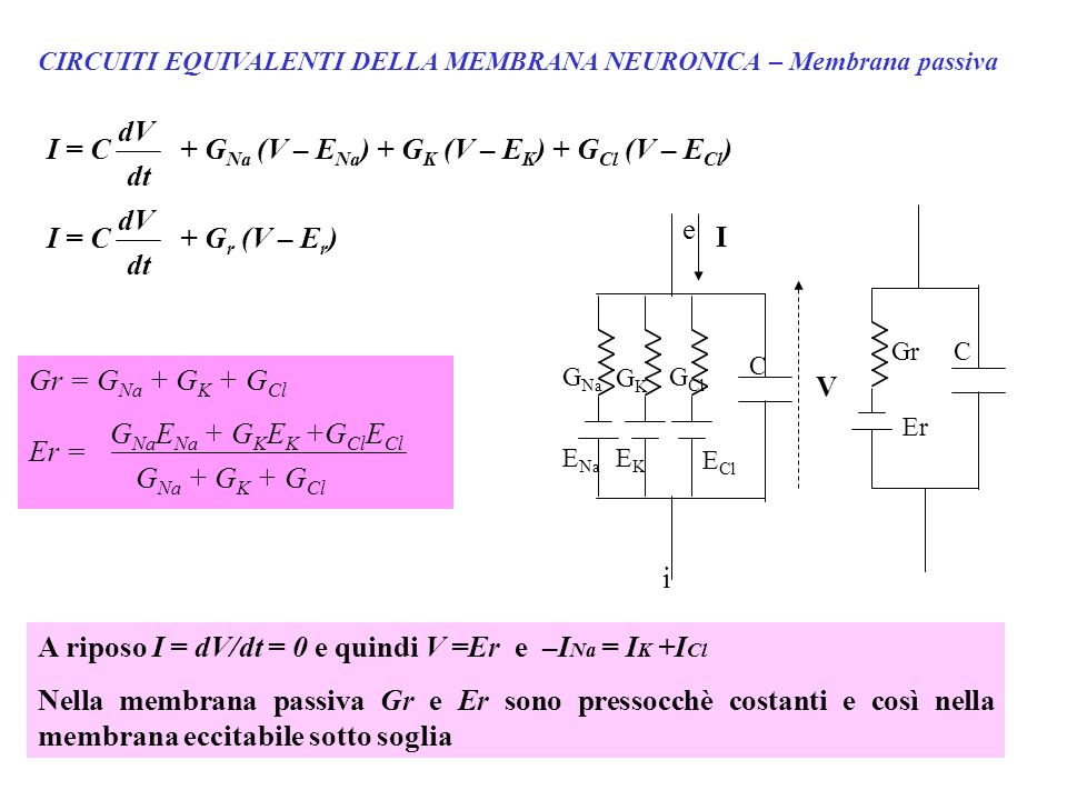 + GNa (V – ENa) + GK (V – EK) + GCl (V – ECl)