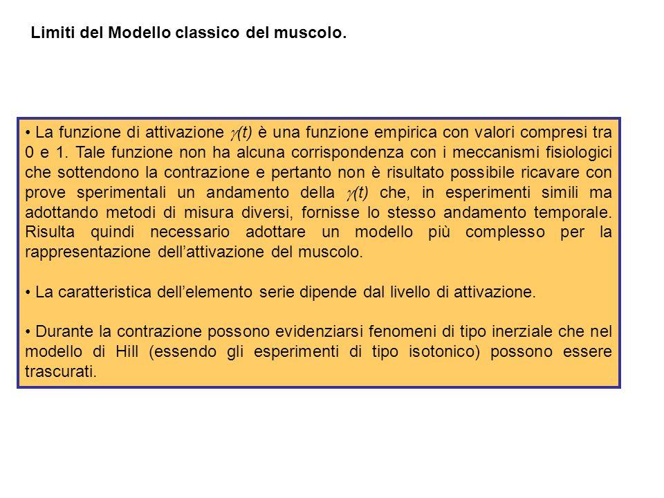 Limiti del Modello classico del muscolo.