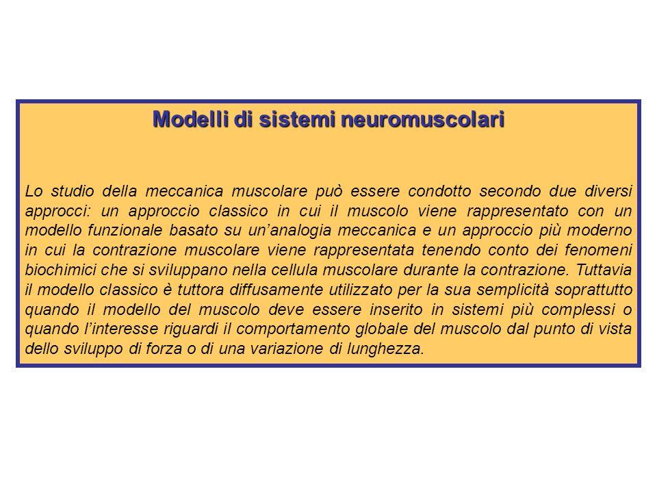 Modelli di sistemi neuromuscolari