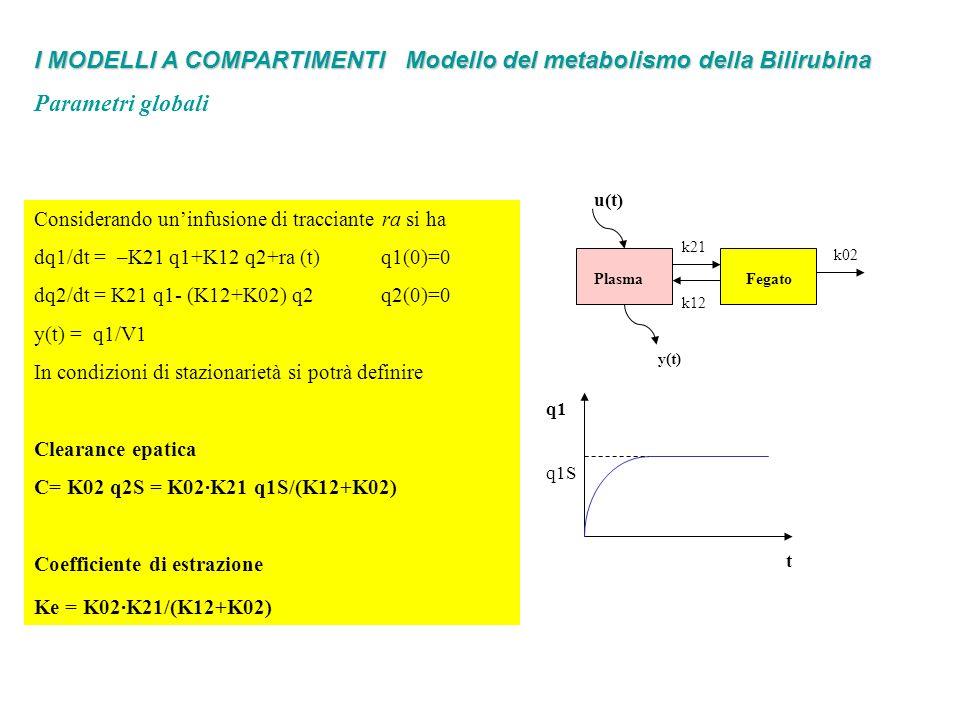 I MODELLI A COMPARTIMENTI Modello del metabolismo della Bilirubina