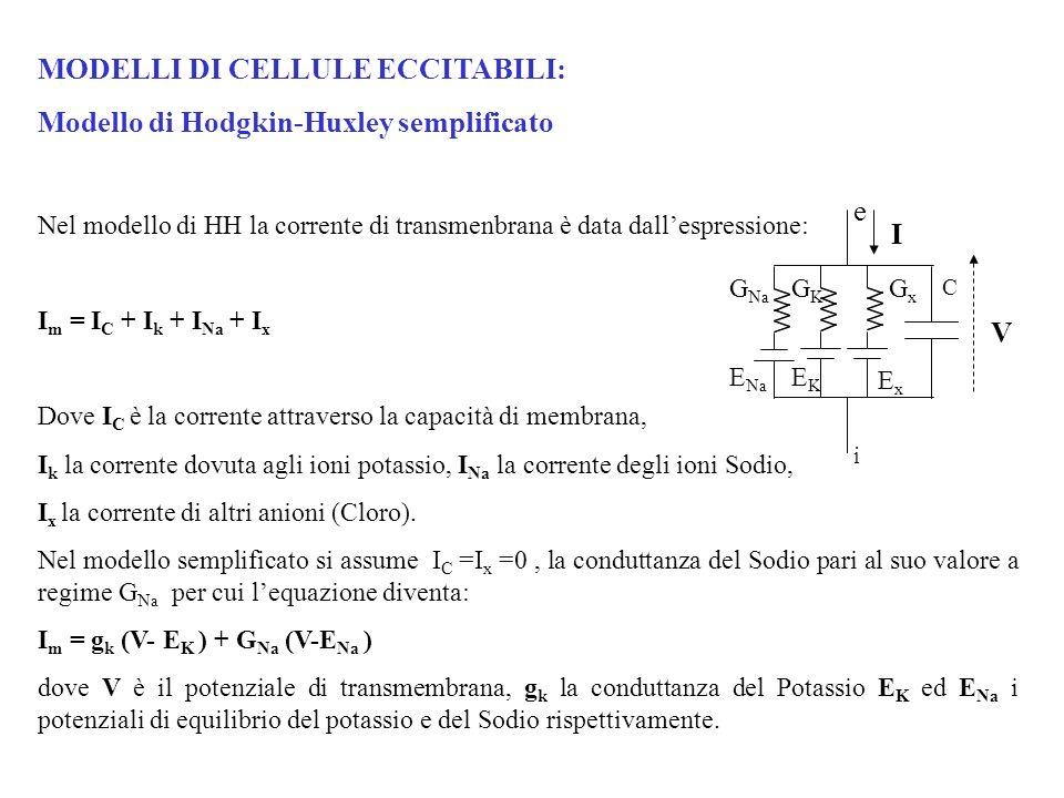 MODELLI DI CELLULE ECCITABILI: Modello di Hodgkin-Huxley semplificato