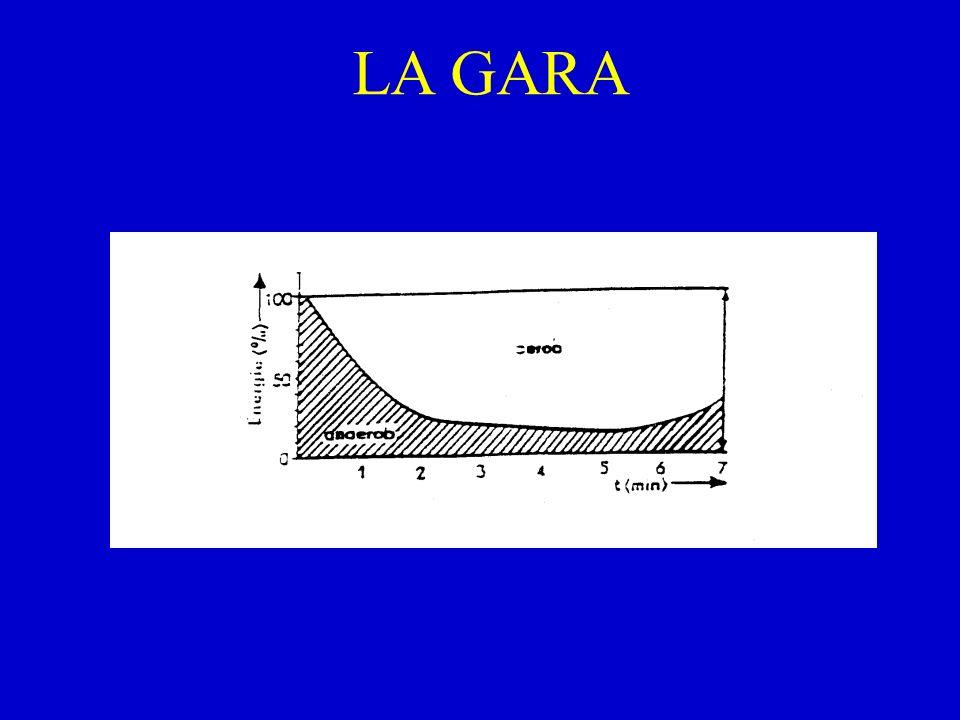 LA GARA
