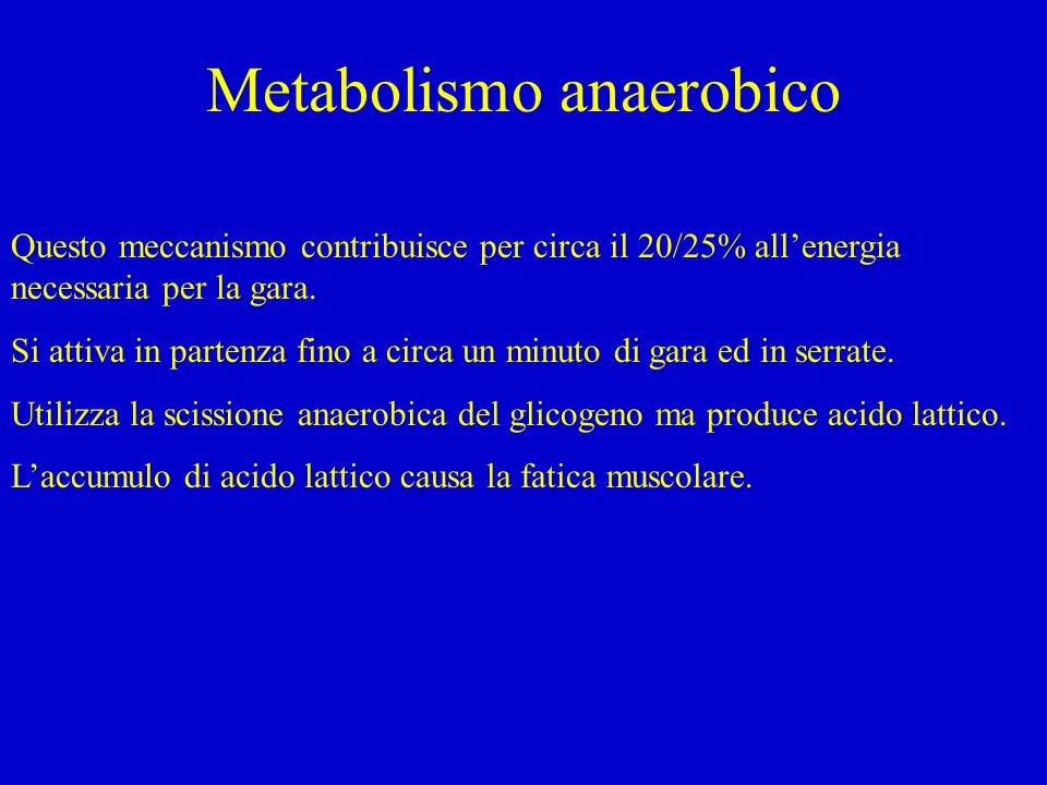 Metabolismo anaerobico