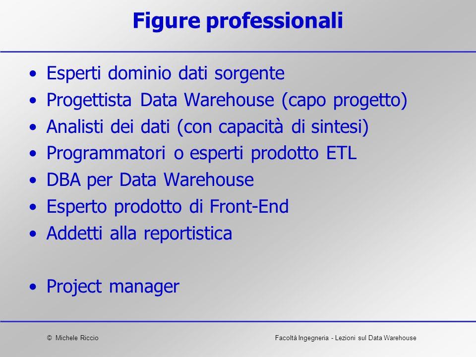 Figure professionali Esperti dominio dati sorgente