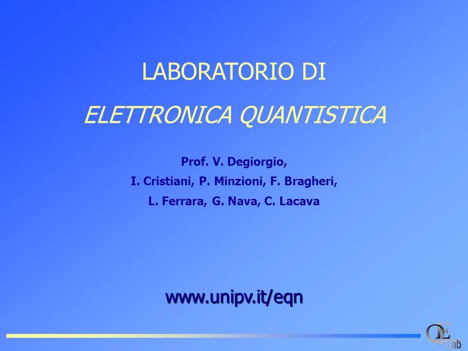 I. Cristiani, P. Minzioni, F. Bragheri, L. Ferrara, G. Nava, C. Lacava
