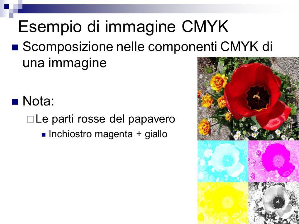 Esempio di immagine CMYK