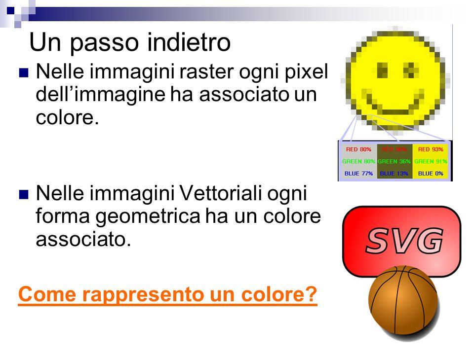 Un passo indietro Nelle immagini raster ogni pixel dell'immagine ha associato un colore.