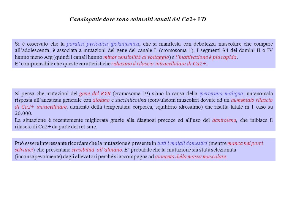 Canalopatie dove sono coinvolti canali del Ca2+ VD