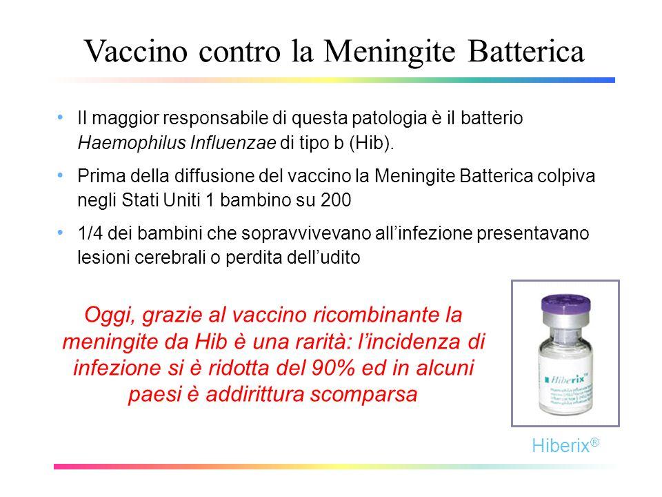 Vaccino contro la Meningite Batterica