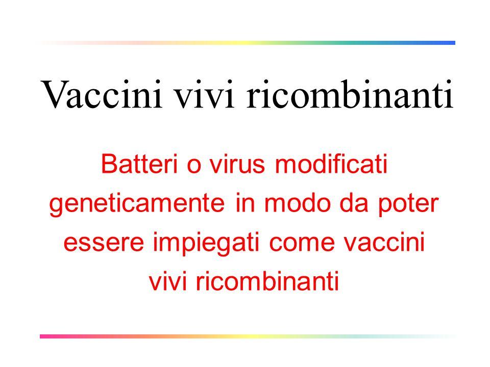 Vaccini vivi ricombinanti