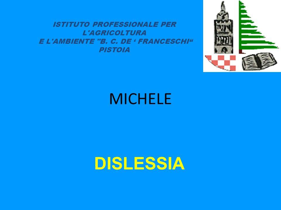MICHELE DISLESSIA ISTITUTO PROFESSIONALE PER L AGRICOLTURA