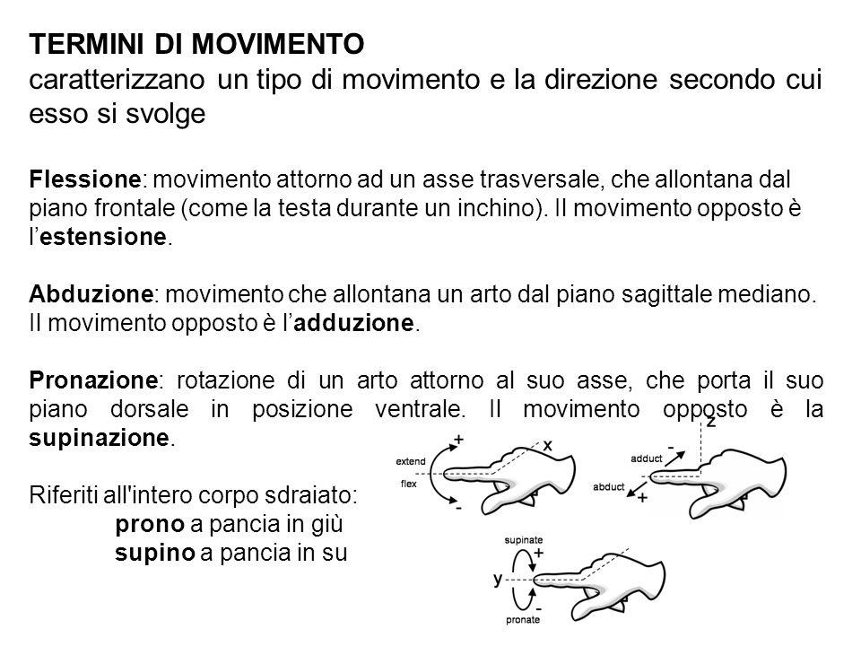 TERMINI DI MOVIMENTOcaratterizzano un tipo di movimento e la direzione secondo cui esso si svolge.