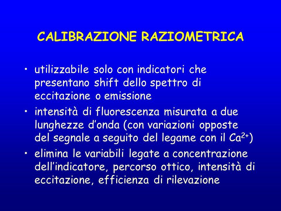 CALIBRAZIONE RAZIOMETRICA