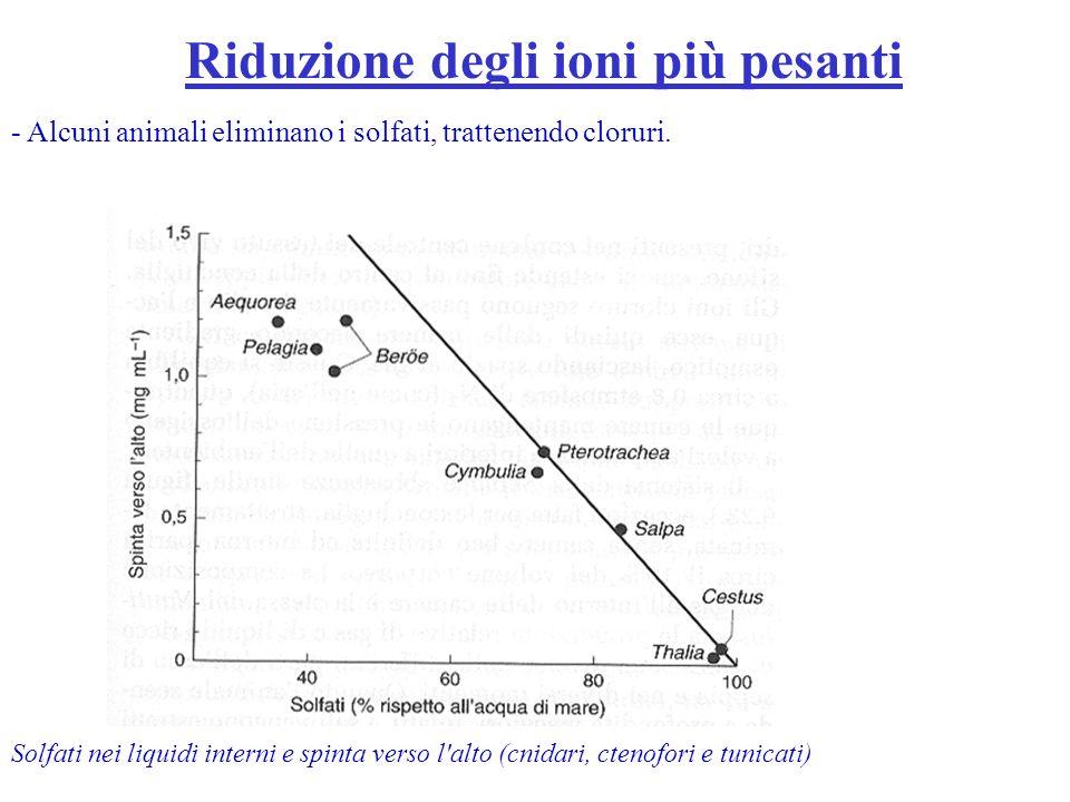 Riduzione degli ioni più pesanti