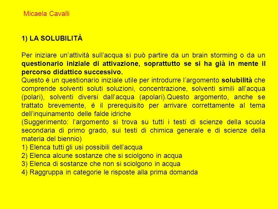 Micaela Cavalli 1) LA SOLUBILITÀ.