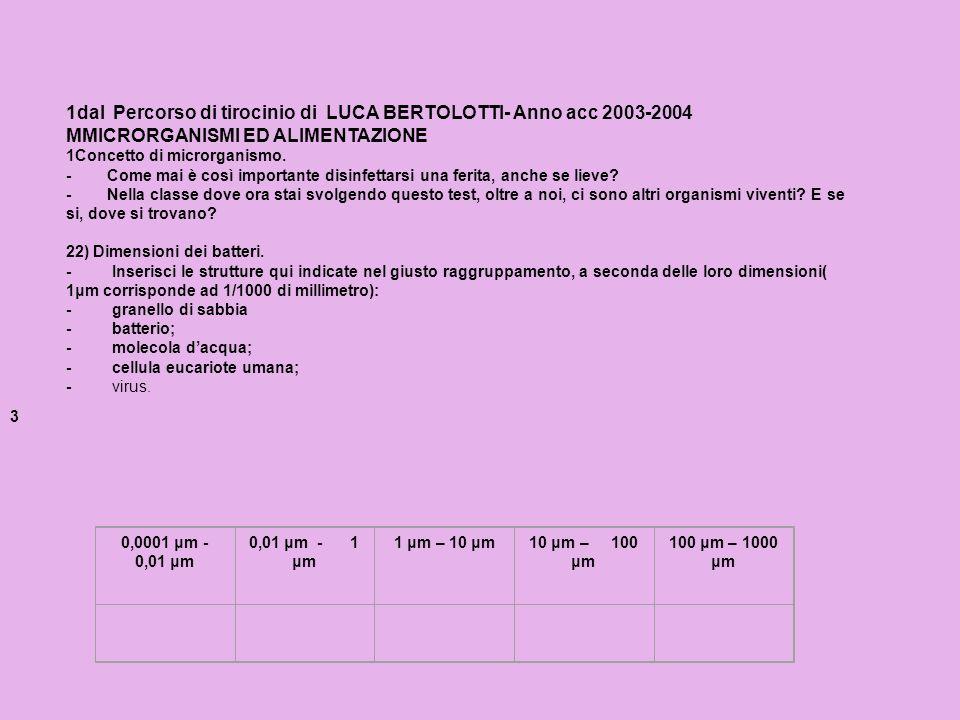 1dal Percorso di tirocinio di LUCA BERTOLOTTI- Anno acc 2003-2004