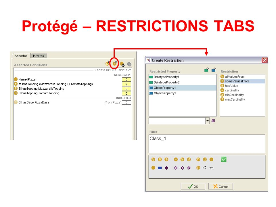 Protégé – RESTRICTIONS TABS