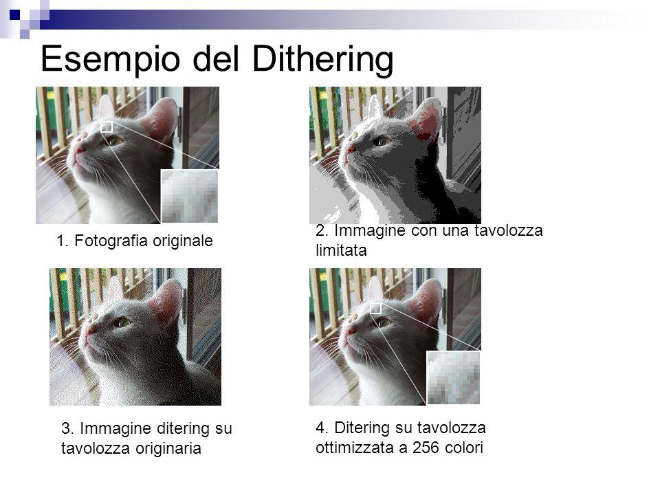 Esempio del Dithering 2. Immagine con una tavolozza limitata