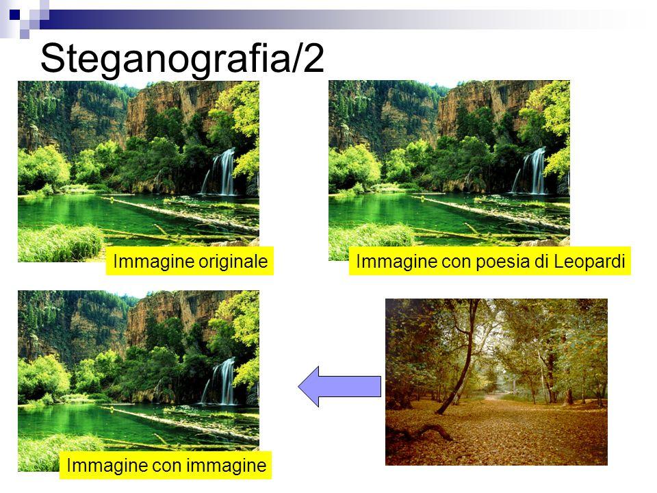 Steganografia/2 Immagine originale Immagine con poesia di Leopardi