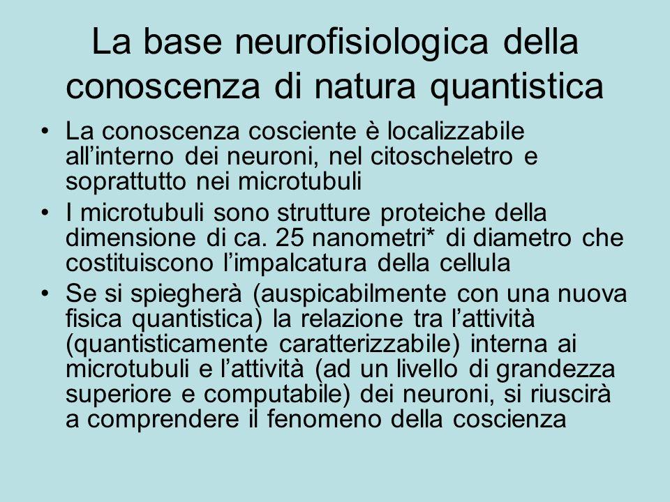 La base neurofisiologica della conoscenza di natura quantistica