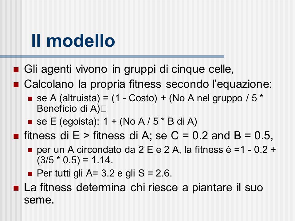 Il modello Gli agenti vivono in gruppi di cinque celle,
