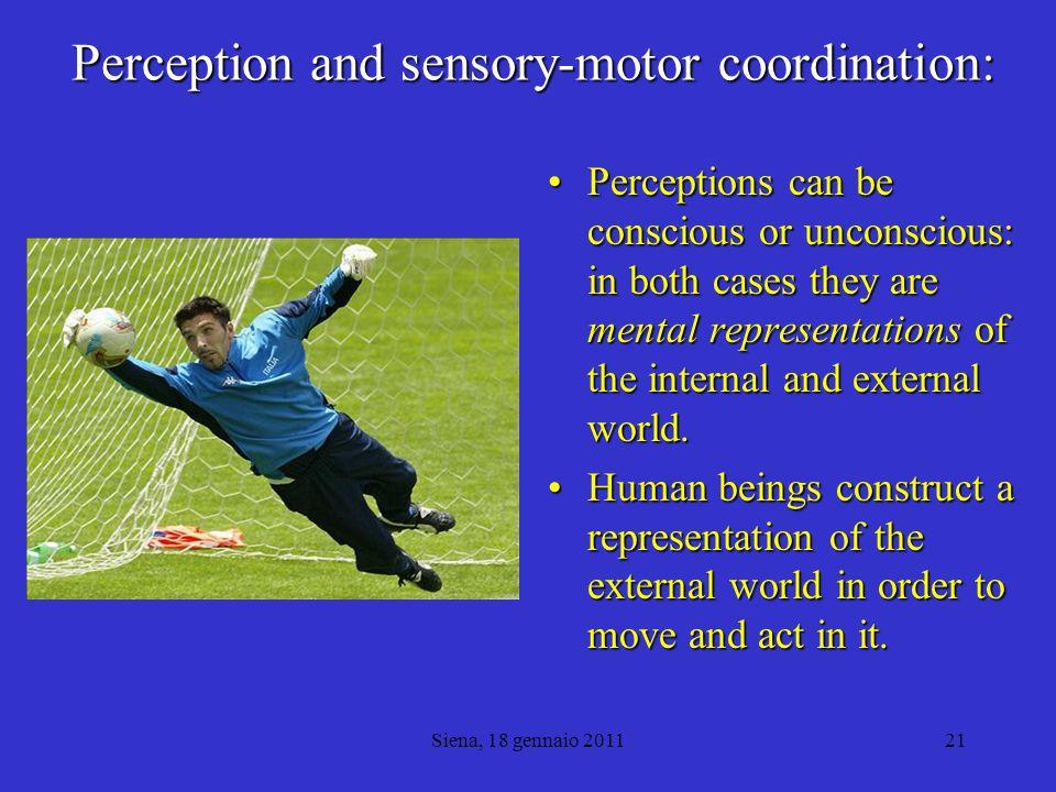 Perception and sensory-motor coordination: