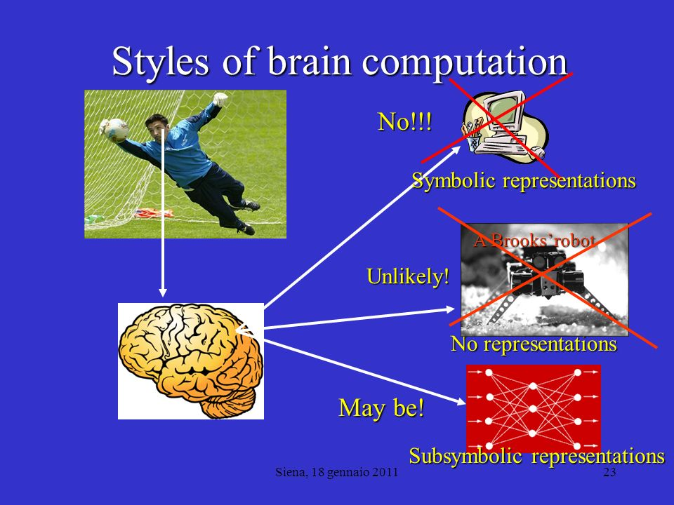 Styles of brain computation