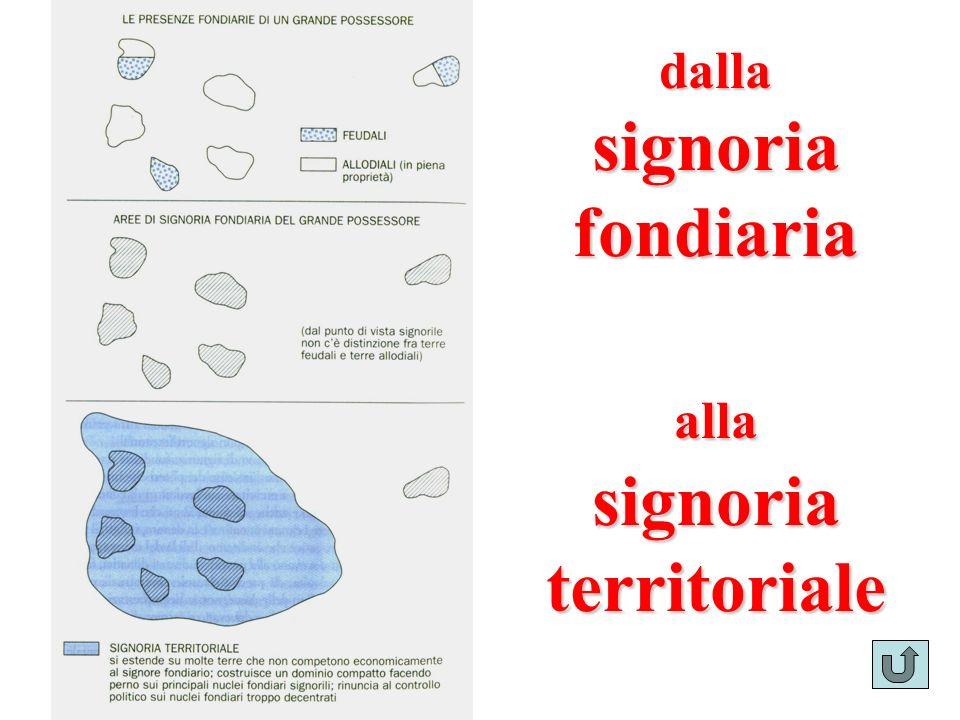 signoria territoriale