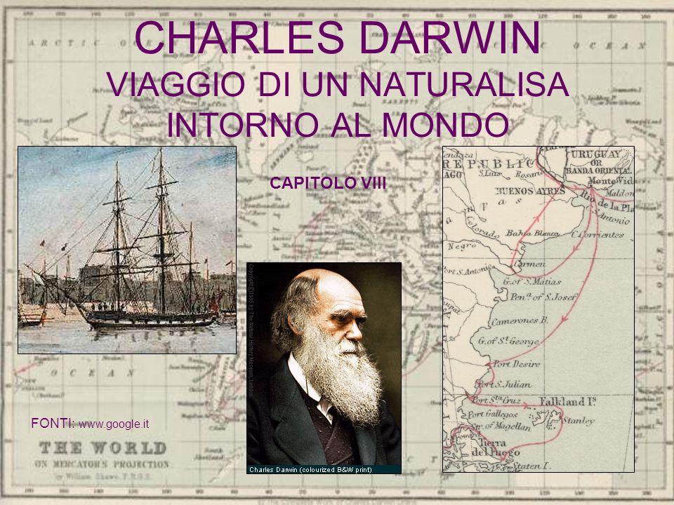 CHARLES DARWIN VIAGGIO DI UN NATURALISA INTORNO AL MONDO