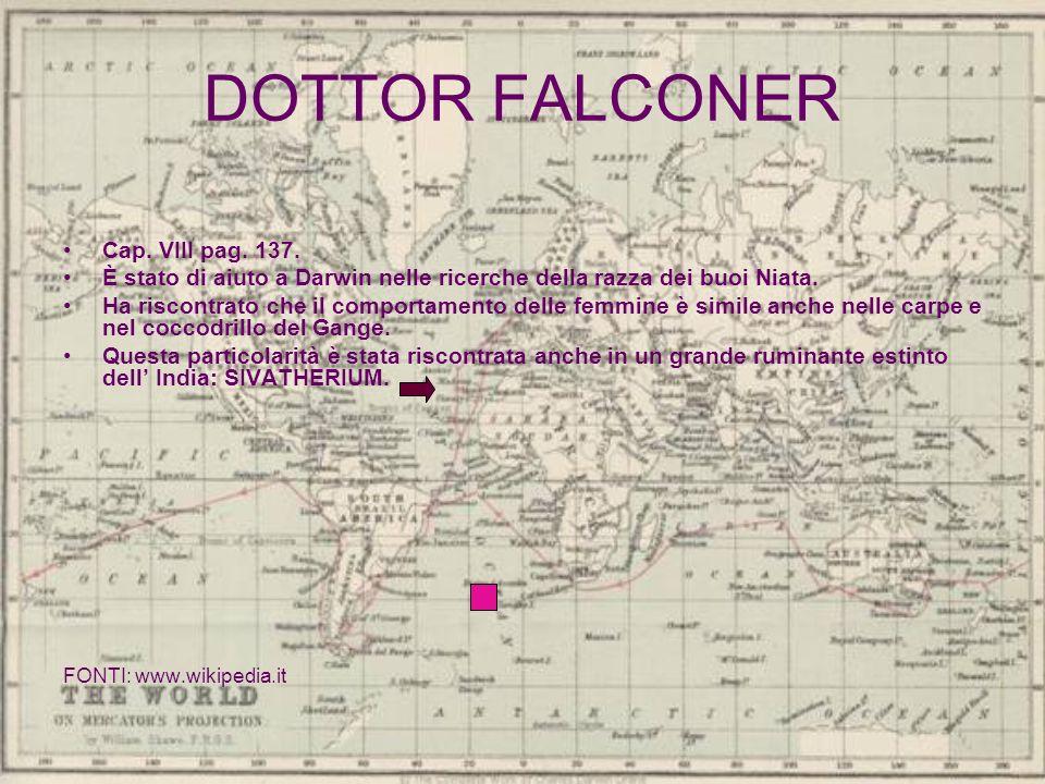 DOTTOR FALCONER Cap. VIII pag. 137.