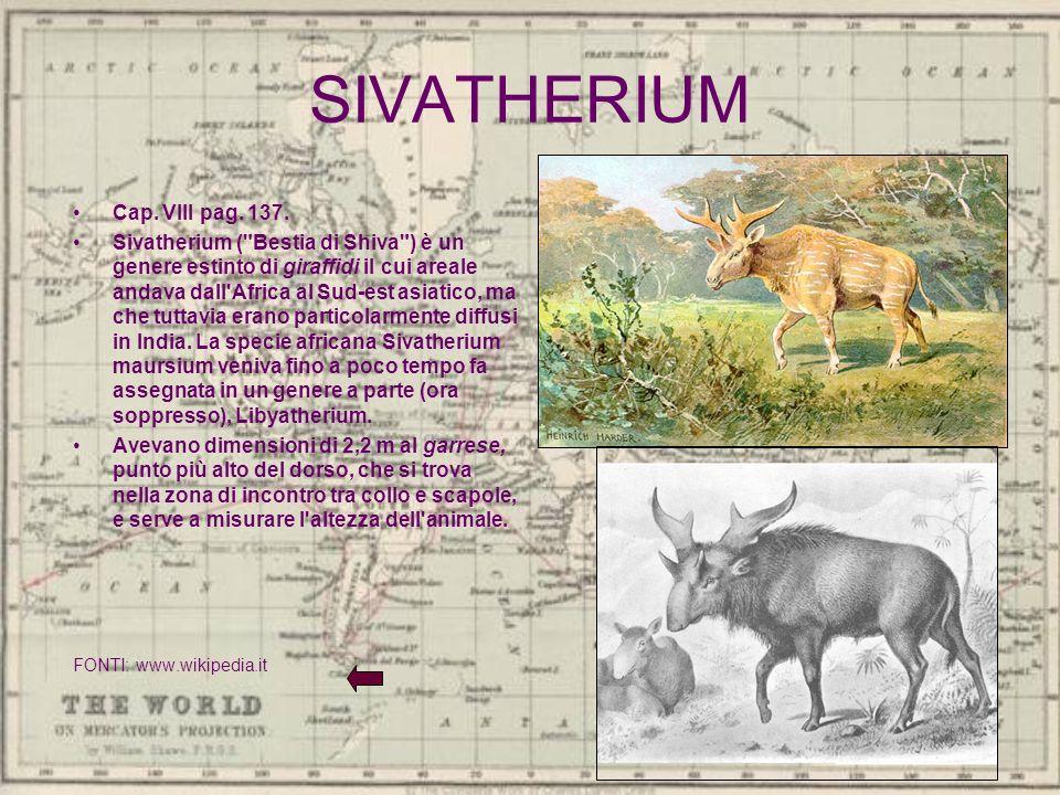 SIVATHERIUM Cap. VIII pag. 137.