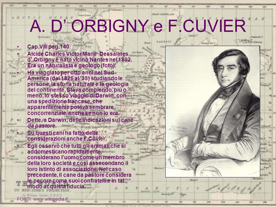A. D' ORBIGNY e F.CUVIER Cap.VIII pag.140