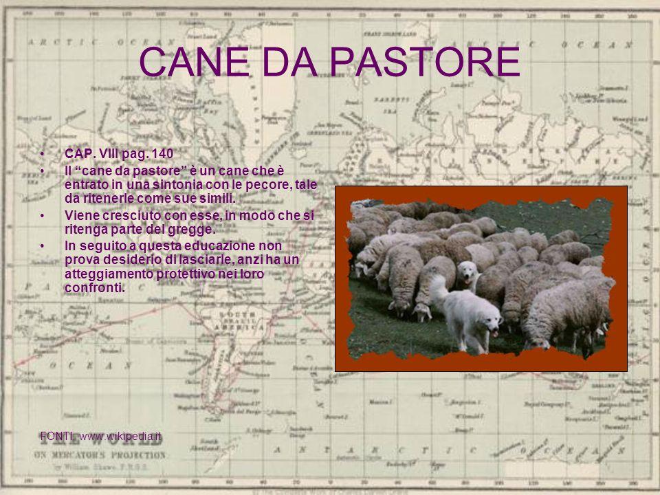 CANE DA PASTORE CAP. VIII pag. 140