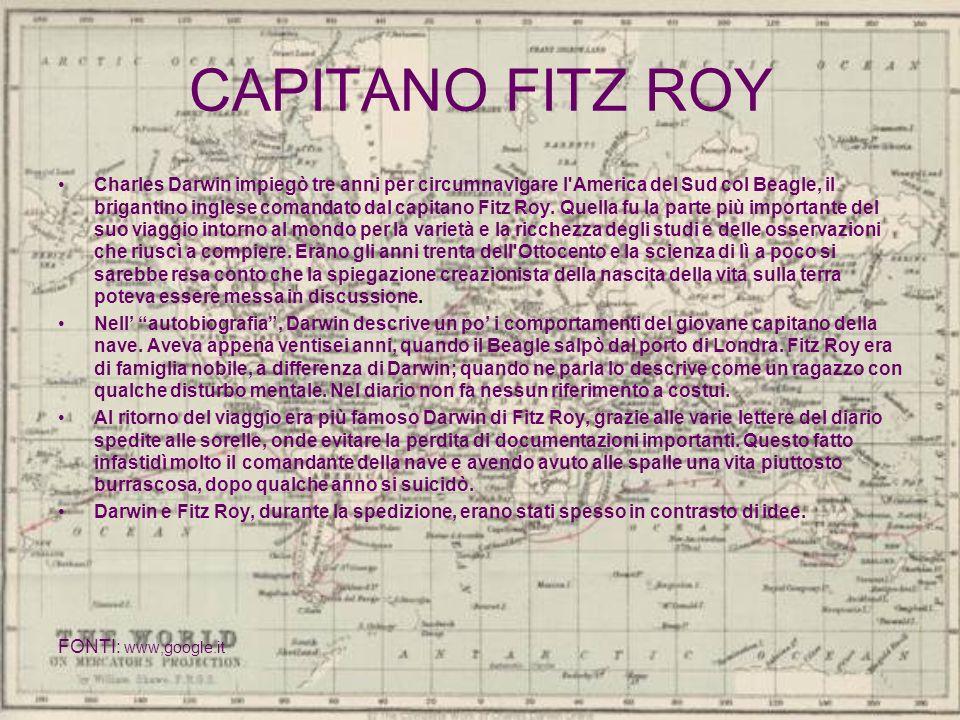 CAPITANO FITZ ROY