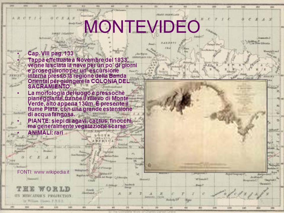 MONTEVIDEO Cap. VIII pag. 133