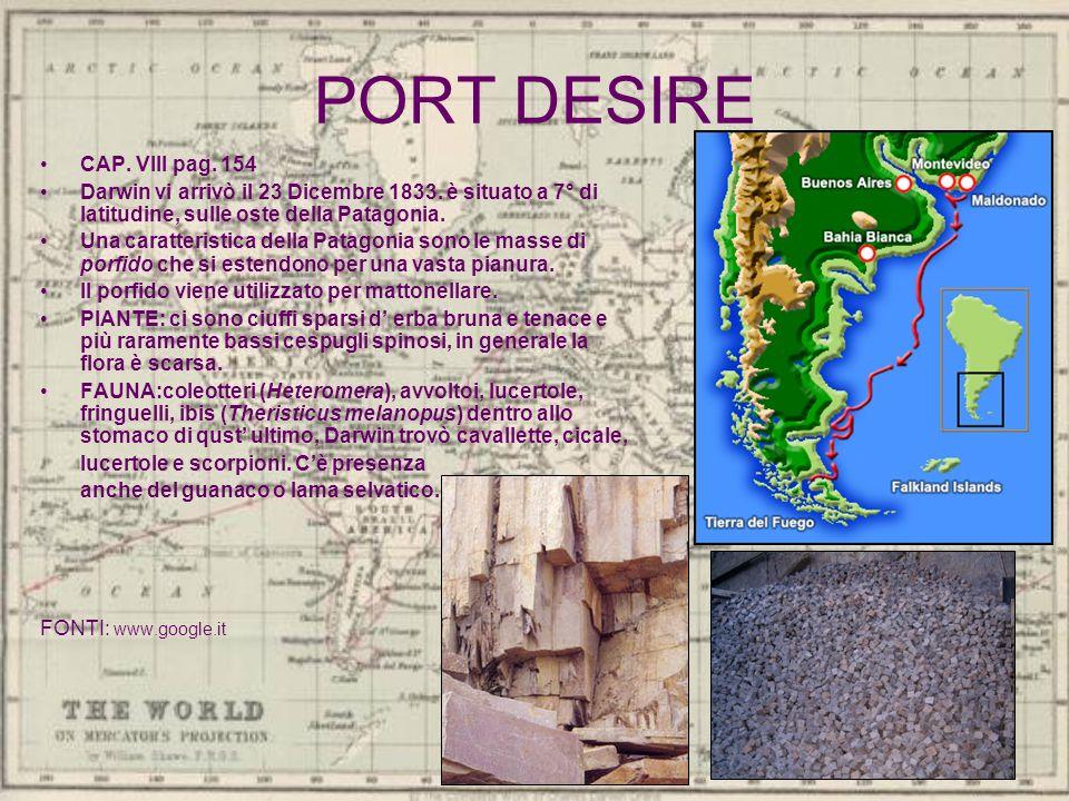 PORT DESIRE CAP. VIII pag. 154