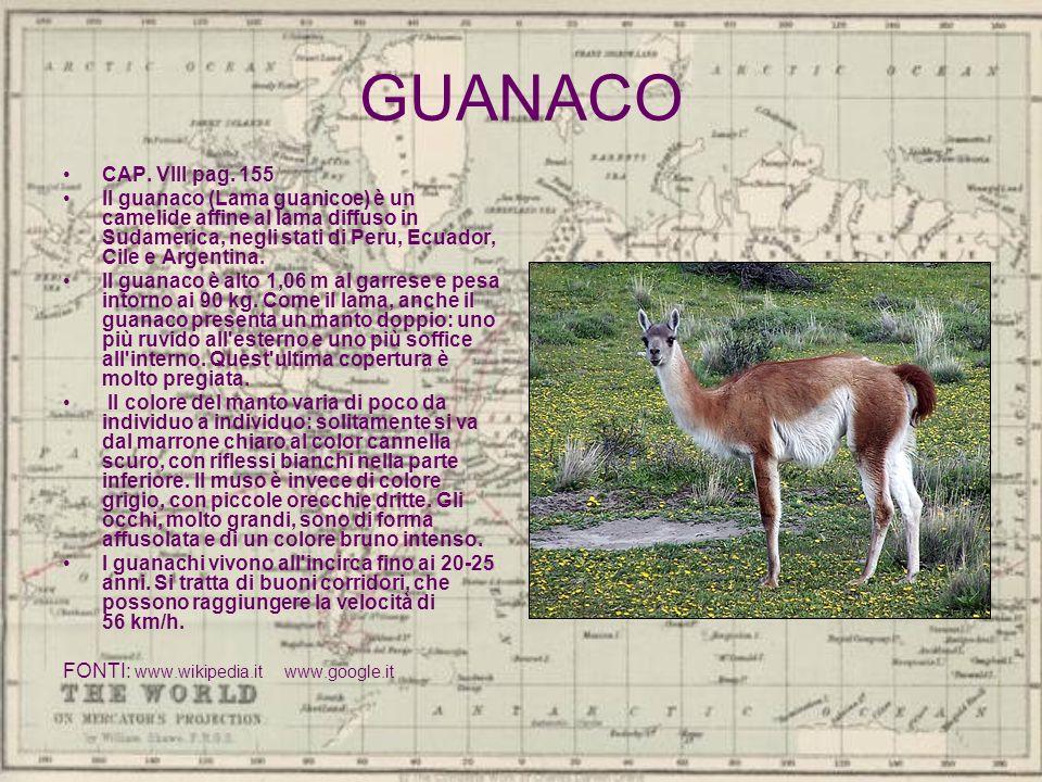 GUANACO CAP. VIII pag. 155.