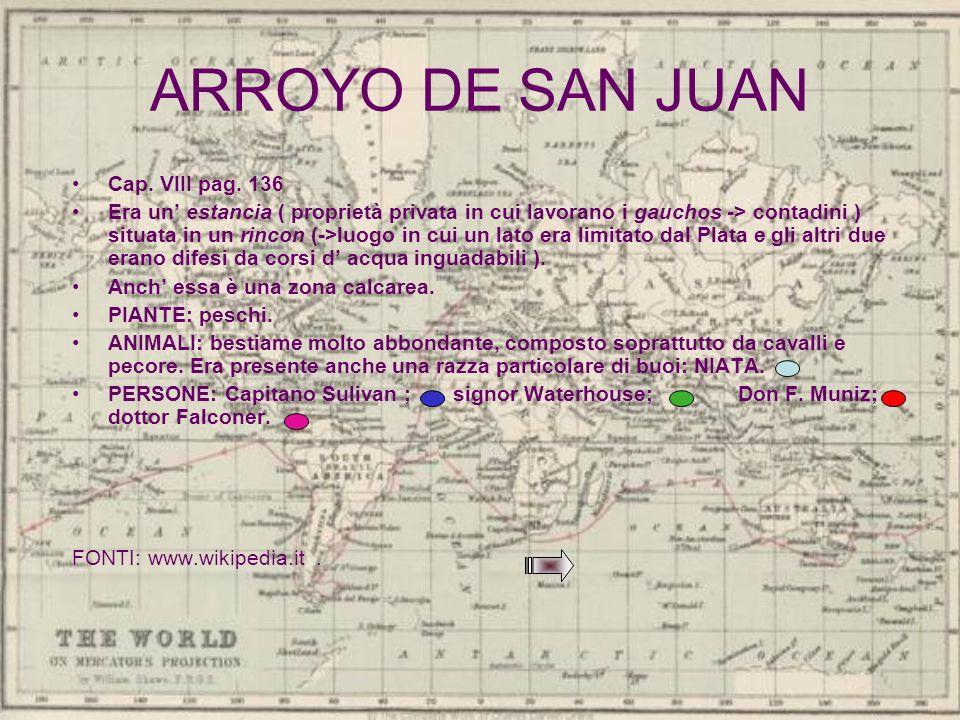 ARROYO DE SAN JUAN Cap. VIII pag. 136