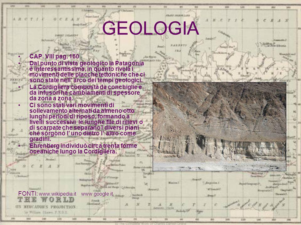 GEOLOGIA CAP. VIII pag. 160.