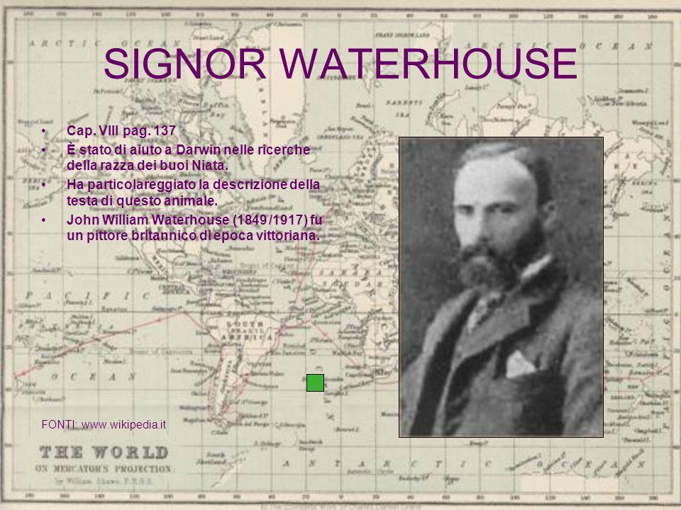 SIGNOR WATERHOUSE Cap. VIII pag. 137