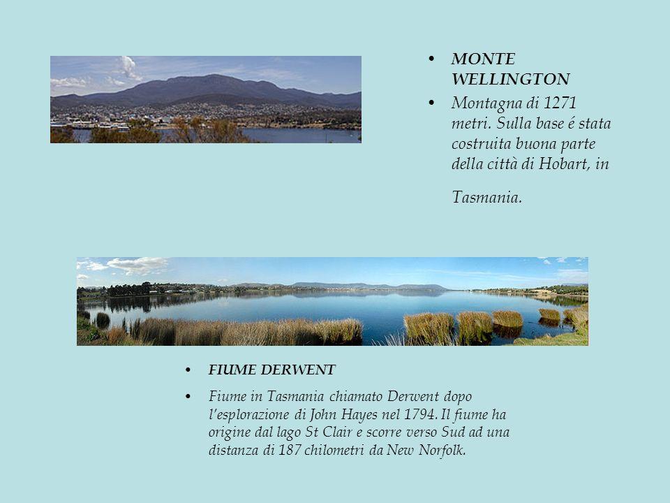 MONTE WELLINGTON Montagna di 1271 metri. Sulla base é stata costruita buona parte della città di Hobart, in Tasmania.