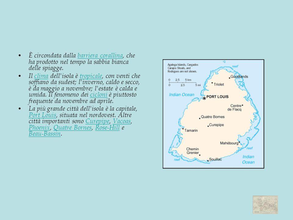 È circondata dalla barriera corallina, che ha prodotto nel tempo la sabbia bianca delle spiagge.