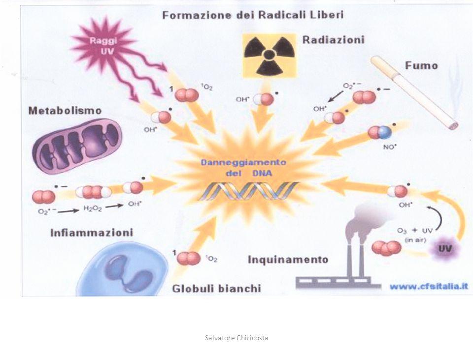 I radicali liberi sono atomi o molecole che contengono uno o più elettroni spaiati nell'orbitale più periferico.