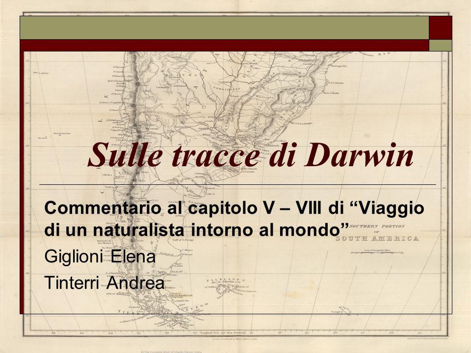 Sulle tracce di Darwin Commentario al capitolo V – VIII di Viaggio di un naturalista intorno al mondo