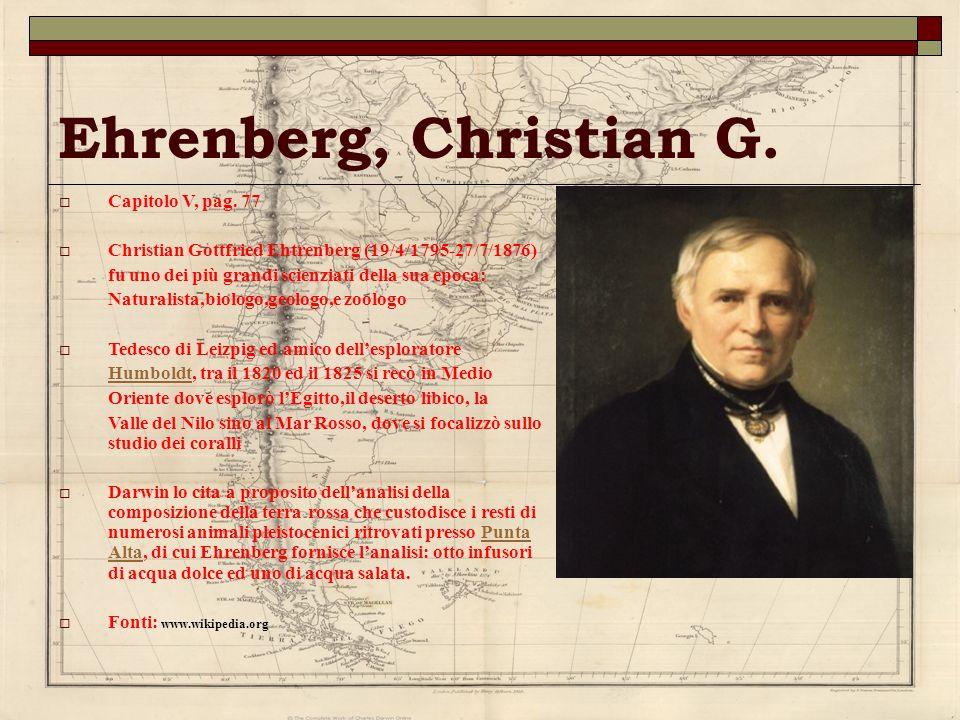 Ehrenberg, Christian G. Capitolo V, pag. 77