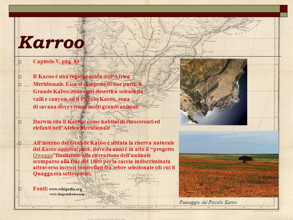 Karroo Capitolo V, pag. 83 Il Karoo è una regione arida dell'Africa