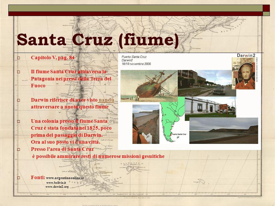 Santa Cruz (fiume) Capitolo V, pag. 84