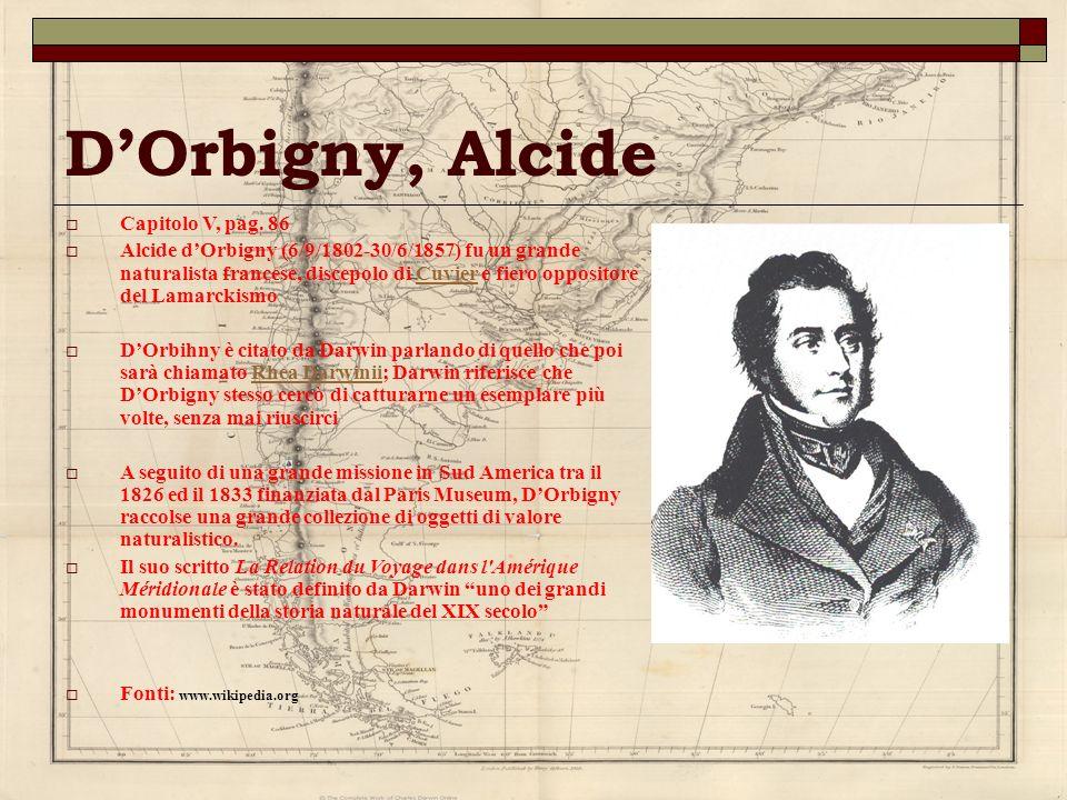 D'Orbigny, Alcide Capitolo V, pag. 86
