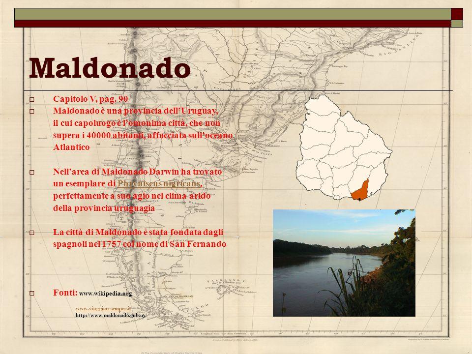 Maldonado Capitolo V, pag. 90 Maldonado è una provincia dell'Uruguay,